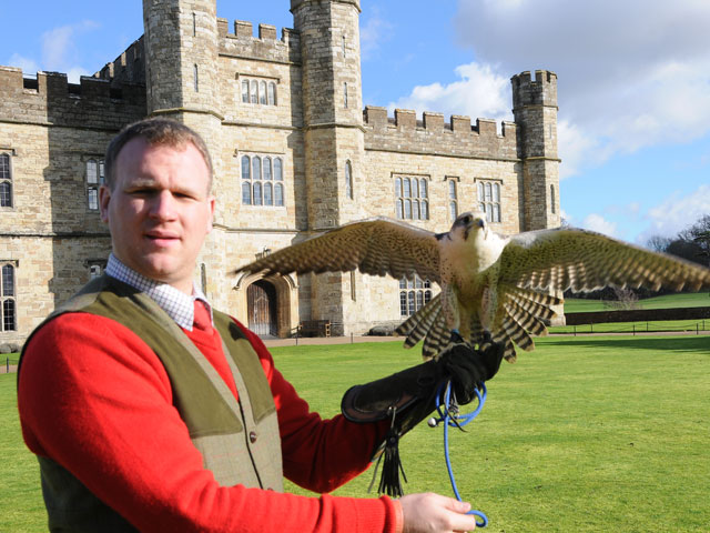 Falconry Dine & Sleep