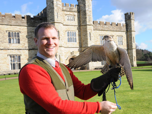 Meet the Falconer