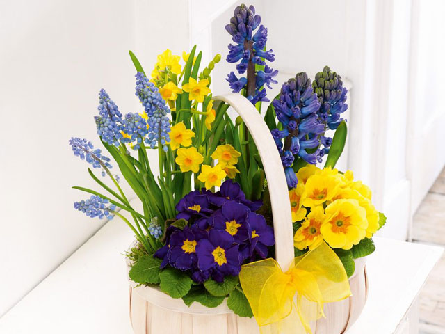 Spring Flower Arranging Workshop